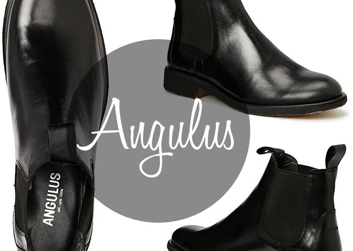 Angulus-st-C3-B8vler